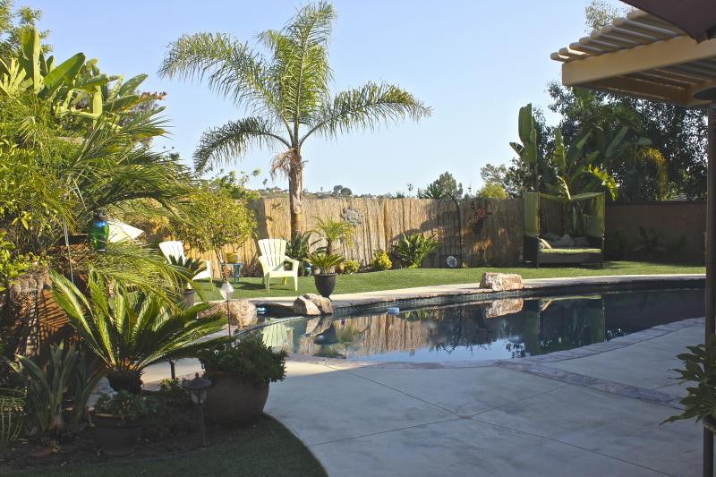 Pool - La Dolce Vita Italian Home - Laguna Niguel - rentals