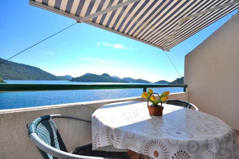 Apartments Tonka - 53911-A2 - Image 1 - Pasadur - rentals