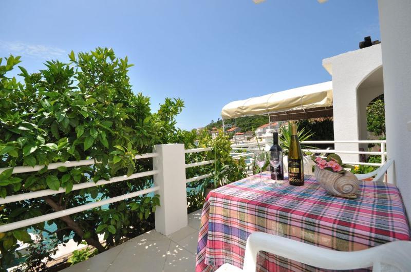 Apartments Slavica - 53941-A2 - Image 1 - Pasadur - rentals