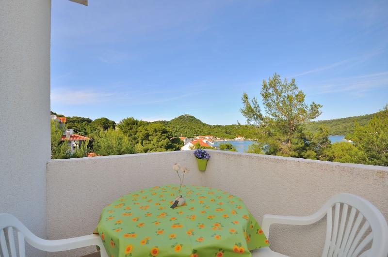 Apartments Daniela - 53951-A1 - Image 1 - Lastovo - rentals
