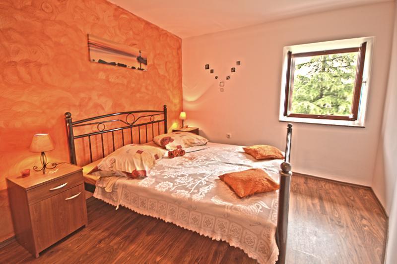 Villa Volta - V2271-K1 - Image 1 - Nedescina - rentals