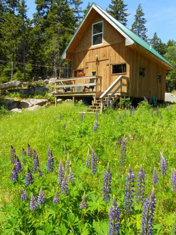 Studio Apartment in Loft - Vacation Swans Island, Maine - OPEN MAY 14, 2015 - Swans Island - rentals