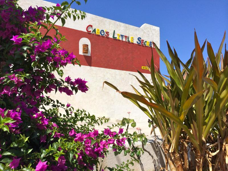 Welcome, we've been expecting you. - Cabo's Little Secret - Cabo San Lucas - rentals