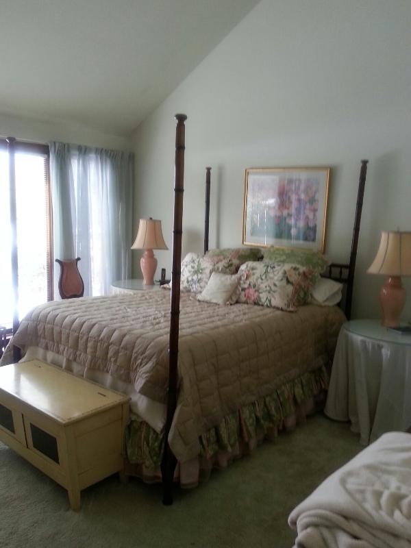 Beautiful house Carversville/New Hope area - Image 1 - Carversville - rentals