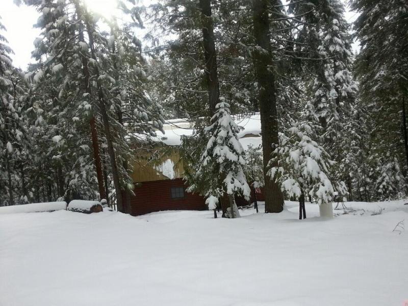 Snow - Cozy Creekside Retreat - Shaver Lake - rentals