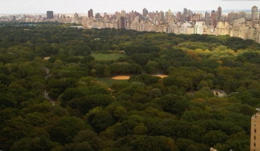 NEXT TO CENTRAL PARK - CENTRAL PARK ADJACENT LUXURY CITY VIEWS SLEEPS 1-4 - New York City - rentals