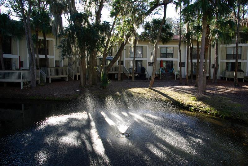 Backyard - Walk to Beach, family friendly Villa - Hilton Head - rentals
