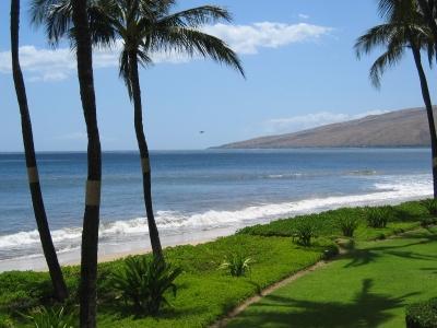 1BR oceanfront condos - Kihei Sands on Sugar Beach - Image 1 - Kihei - rentals