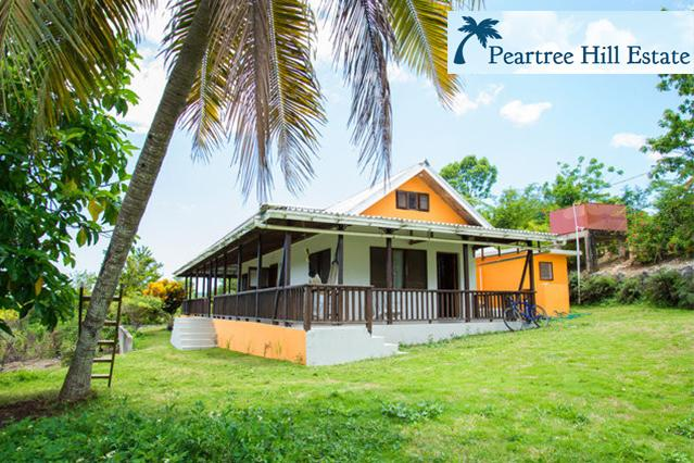 530 sq.ft. wrap-around veranda - Private Home on 2 Fruited Acres w/ Beautiful Views - Negril - rentals