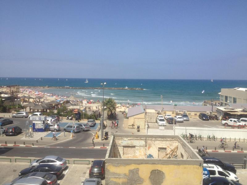 Amazing Apa on the BEACH of TLV!!! - Image 1 - Gedera - rentals