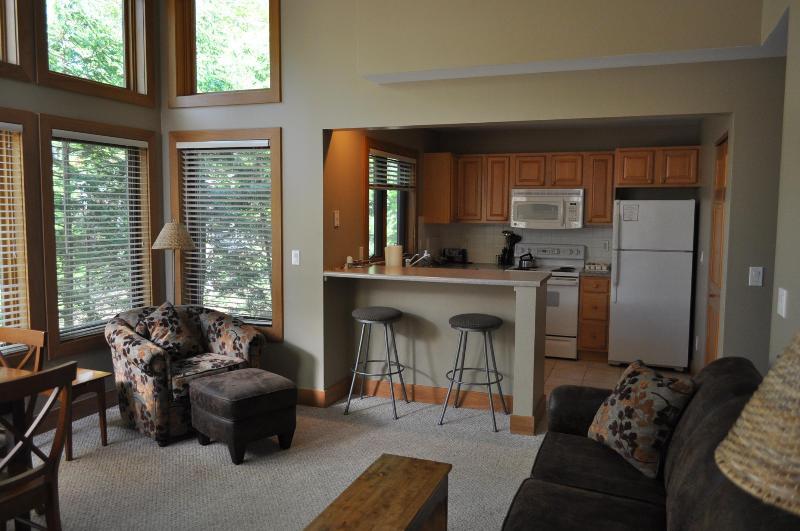 Kitchen - Boyne Mtn Resort - golf, tennis, pools and lake - Boyne Falls - rentals