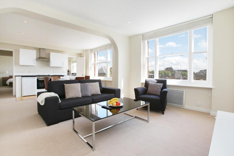 48. 2 BR2BA WITH OPEN VIEWS ON PRESTIGIOUS MAYFAIR - Image 1 - London - rentals