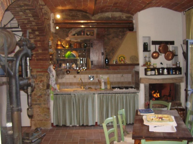Particular ancient apartment in the blacksmith's workshop - Image 1 - Castagneto Carducci - rentals