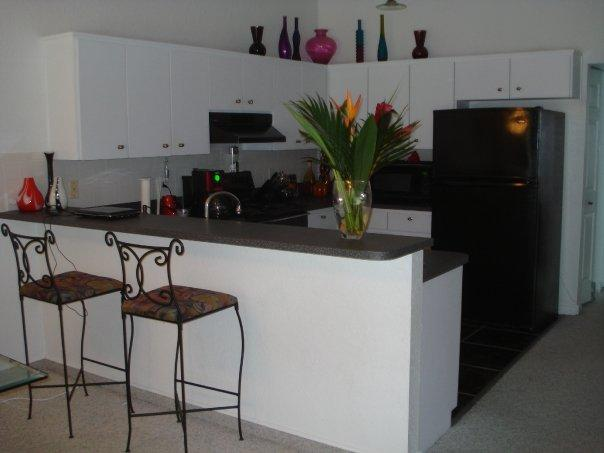 Modern Kitchen - Tropical Gulf Coast Paradise - Palm Harbor - rentals