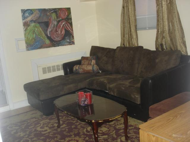 Living room - Furnished Comfey 2 Br Apt Near Metro,hec,jgh,downtown - Montreal - rentals