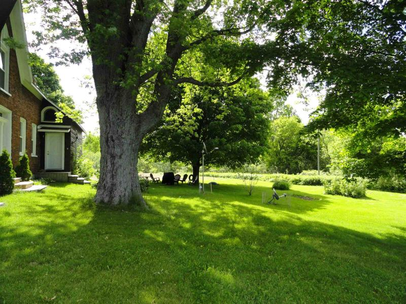 Garden with BBQ, picnic table and lounge chairs - 2 bed cottage West Lake 5 mins Sandbanks sleeps 6 - Bloomfield - rentals