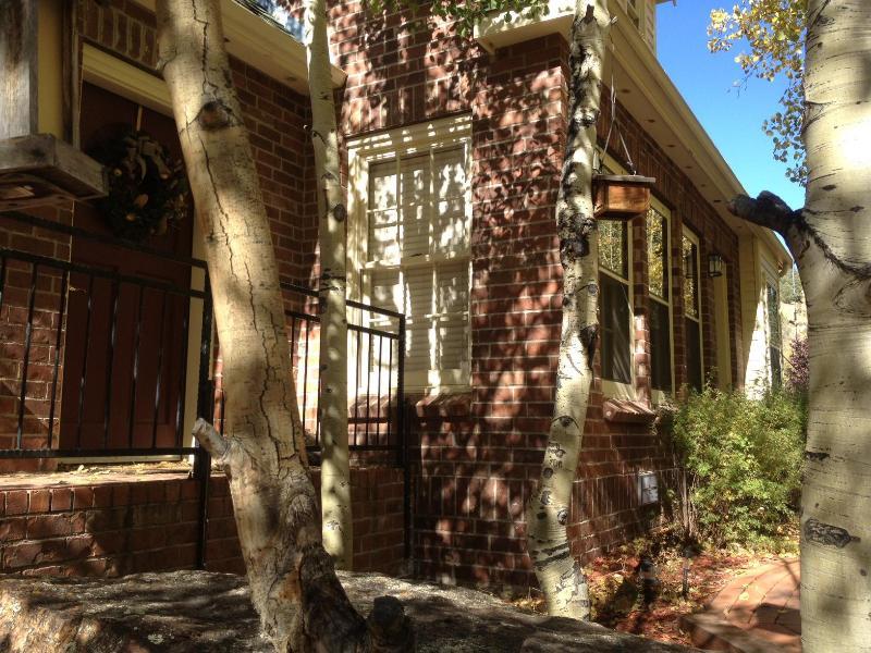 Williamsburg - The Williamsburg - Divide - rentals