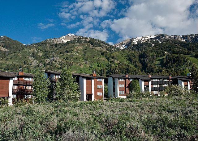 Powder Paradise at Perfect Price - Image 1 - Teton Village - rentals
