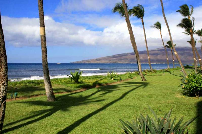SUGAR BEACH RESORT, #130* - Image 1 - Kihei - rentals