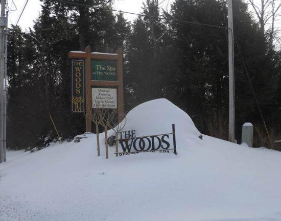 Woods Resort & Spa Village 48 - Two bedroom Two bathroom Health Club Privileges - Image 1 - Killington - rentals