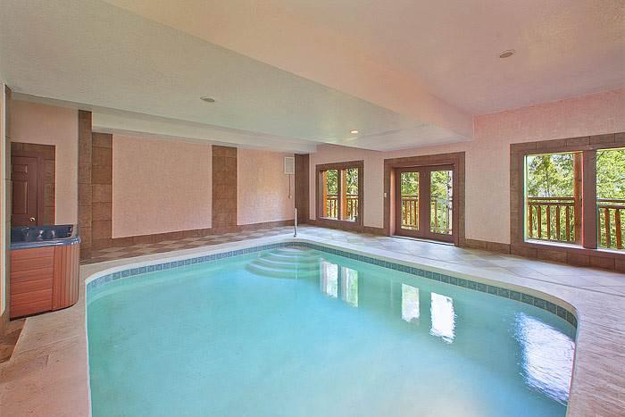 Indoor Pool Beauty - Image 1 - Cosby - rentals