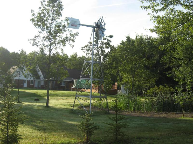 pond and windmill - Pat's Little Bit of Country - Niagara Falls - rentals
