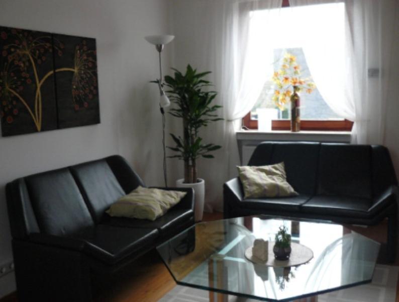 LLAG Luxury Vacation Apartment in Remscheid - contemporary furniture, backyard, terrace (# 1235) #1235 - LLAG Luxury Vacation Apartment in Remscheid - contemporary furniture, backyard, terrace (# 1235) - Remscheid - rentals