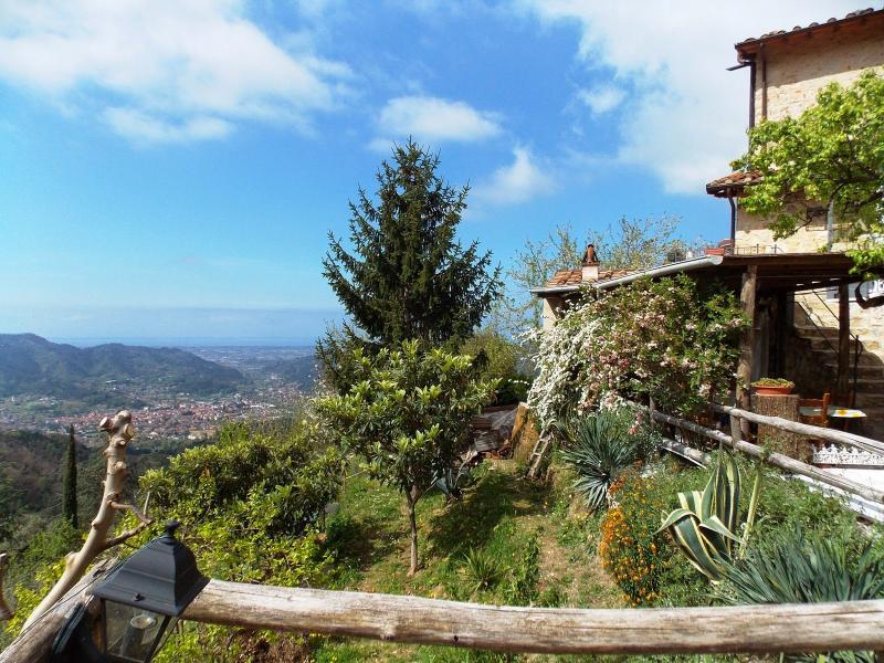 Casa Sissi - Image 1 - Camaiore - rentals