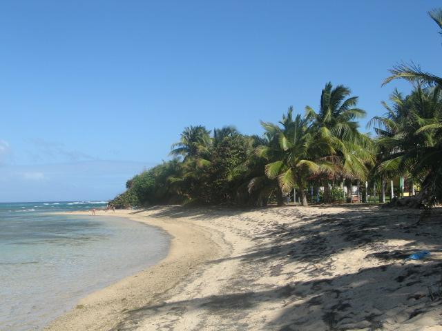 Local beach within walking distance - Andy's Casa Del Caribe - Isla de Vieques - rentals