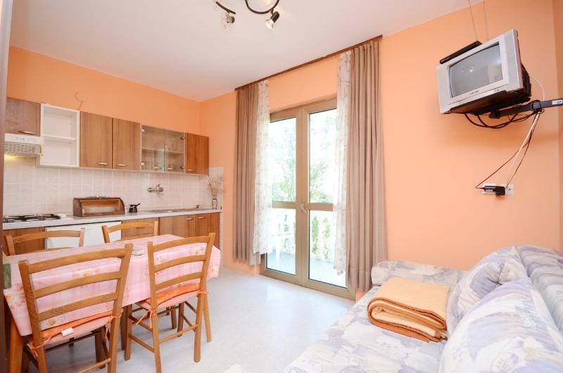 Apartments Željka - 65511-A2 - Image 1 - Palit - rentals