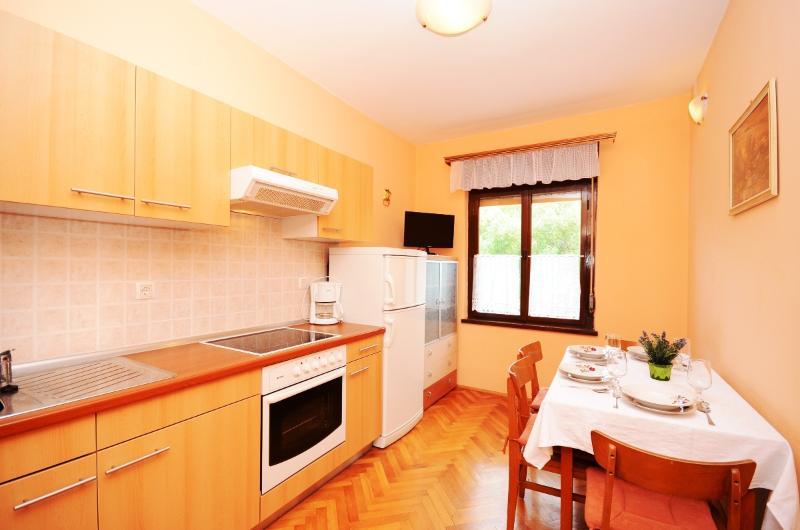 Apartment Ivanka - 66801-A1 - Image 1 - Banjol - rentals