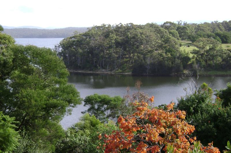 View from the deck - LAKE VIEW 2 BDRM COTTAGE FRINGED BY NATIONAL PARK - Bermagui - rentals