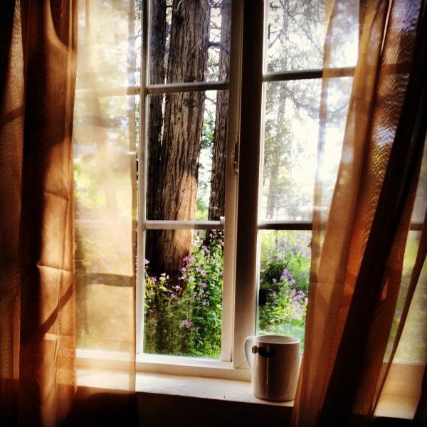 View from the bedroom window - RockyDell Retreat - Crestline - rentals