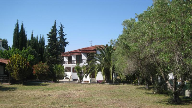 east side of the complex with the big yard - Cosy duplex house in beachfront location - Pefkohori - rentals