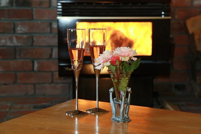 Fireplace - 3 Bedroom Apartment, Sleeps 8 - Methven (Mt Hutt) - Methven - rentals