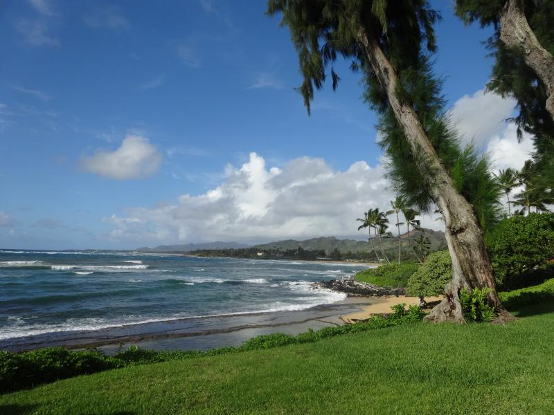 View north from Kapaa Sands - Tropical Ocean Front Resort 2 Bedroom 1.5 Baths - Kapaa - rentals