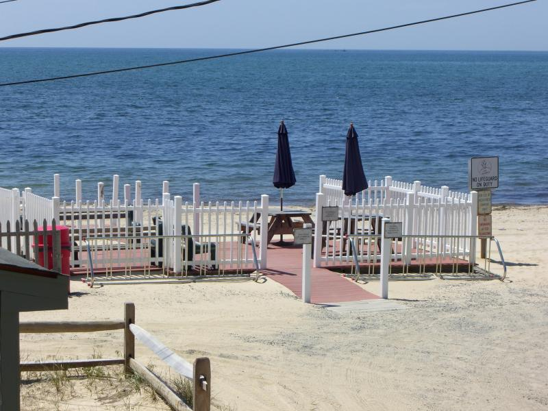 Beach House View from Back Porch - Beautiful Cape Cod Home Right on Nantucket Sound! - Dennis Port - rentals
