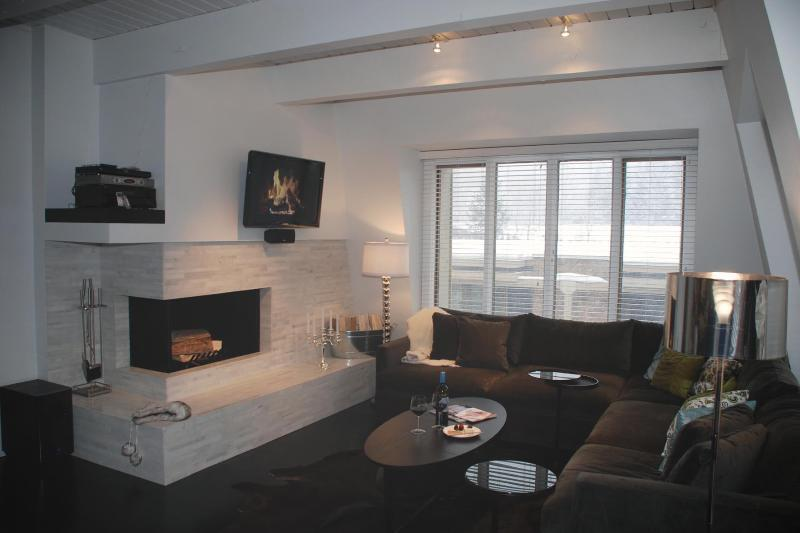 Lounging in Aspen - Luxury Living in Downtown Aspen 120 yds to Gondola - Aspen - rentals