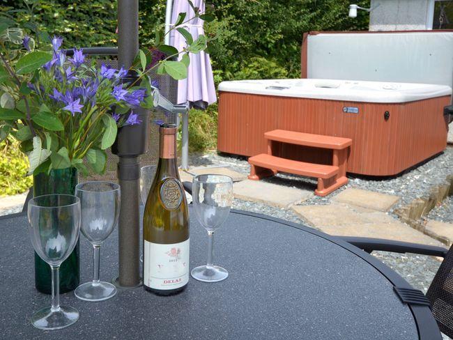 Enclosed garden with hot tub - CCARA - Ashwater - rentals