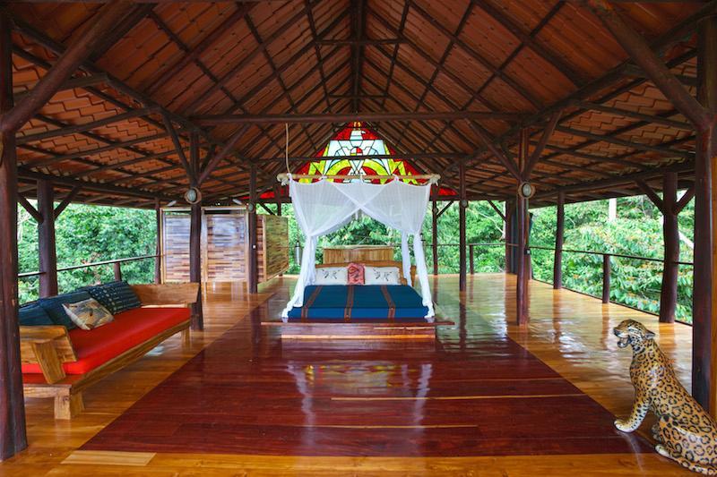 Punta Jaguar Treehouse - Its a jungle out here. - Image 1 - Puerto Jimenez - rentals