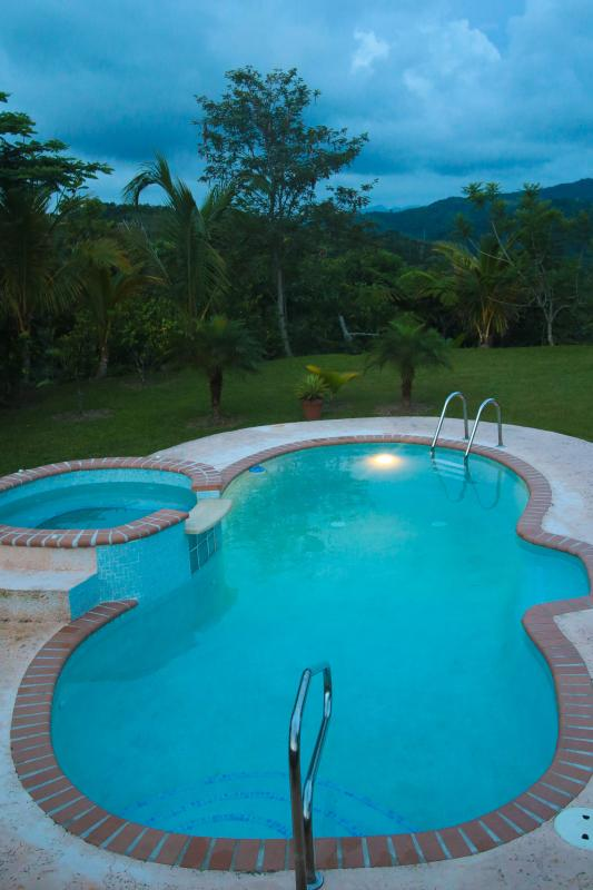 Beautiful outdoor pool with Jacuzzi! - Utuado Mountains/Pool/Wi-fi/Relax - Casa Nube - Utuado - rentals