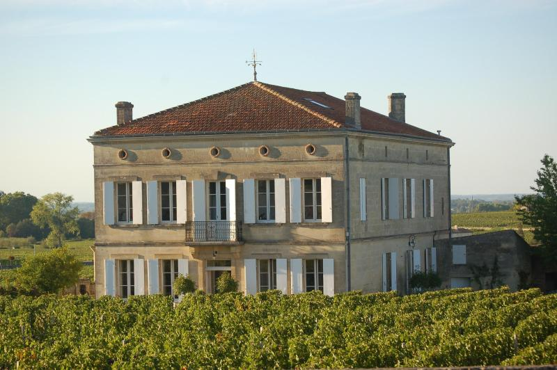 Saint-Emilion Exclusive Luxury Wine Villa / Chateau Rental - Le Pavillon - Chateau/villa Saint-Emilion centre, near Bordeaux - Saint-Emilion - rentals