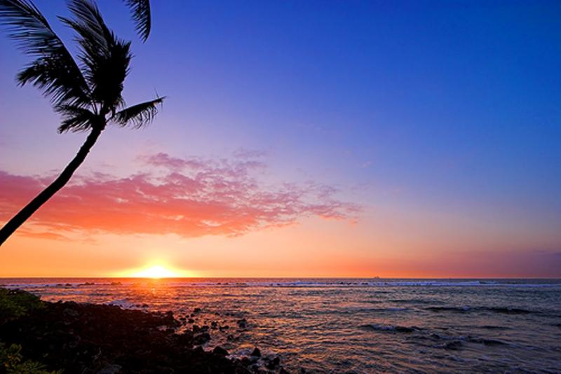Warm Sunsets - Elegant White Sands Estate with Tropical Grounds - Kailua-Kona - rentals