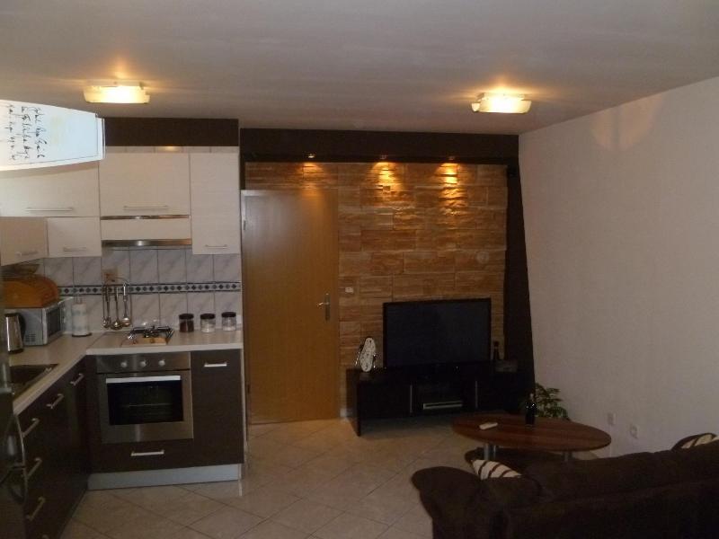 Atractive apartment  D - Image 1 - Split - rentals
