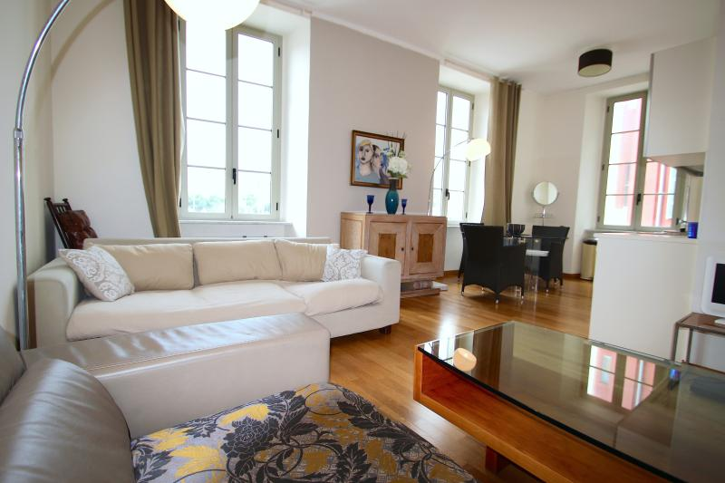 Large, bright, airy L shape slitting room with plenty of lighting to set the mood desired. - Pretty balcony apartment facing Place Massena, the fountains and the Old Chateau. - Nice - rentals