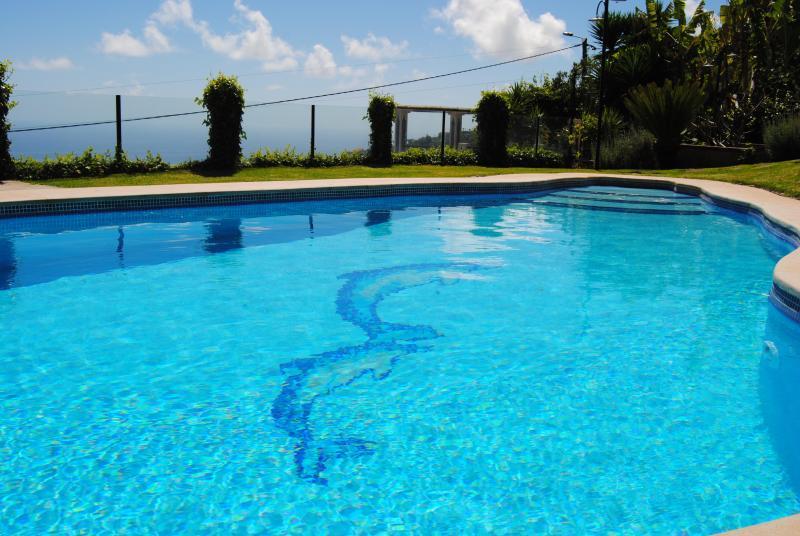 Piscina privada, requinte e charmosa Vila!!! - Villa - Arco da Calheta - rentals