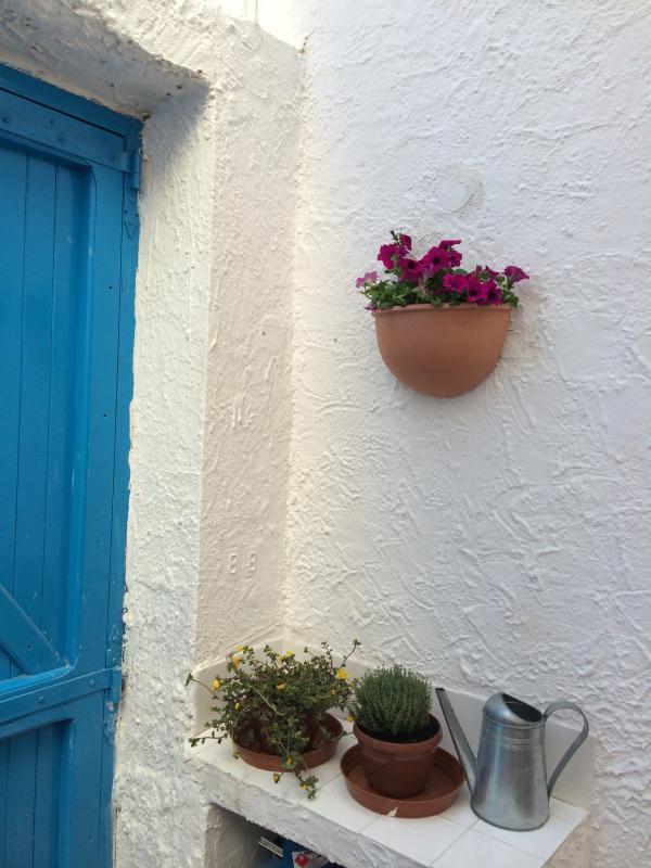 Cà Patrizia is a typical fishermens' house - Cà da Patrizia, romantic and perfectly located - Calasetta - rentals