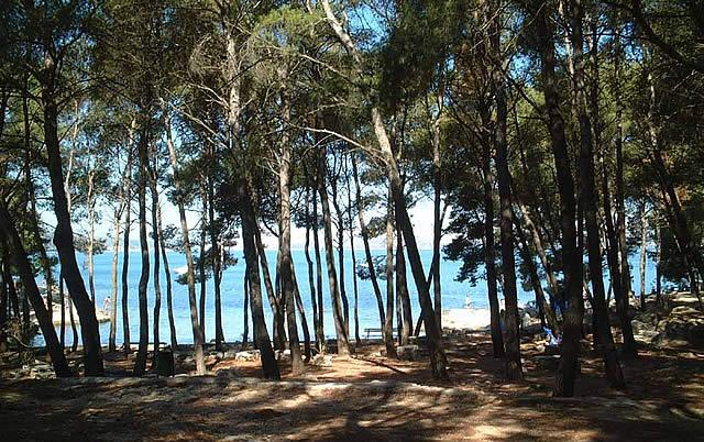 beach at the distance of 5 minutes easy walk - Apartment Neve - Summer Leisure - Split - rentals