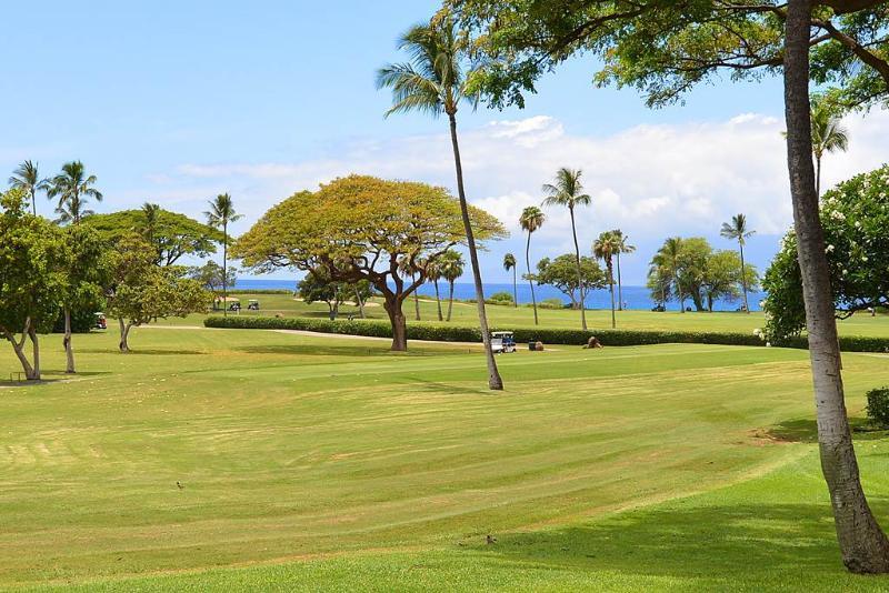 Maui Eldorado: Maui Condo G109 - Image 1 - Ka'anapali - rentals