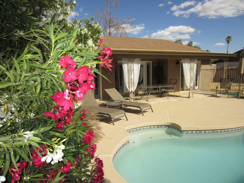1 Level House @ Condo Price! Private Pool & Yard 2 - Image 1 - Scottsdale - rentals